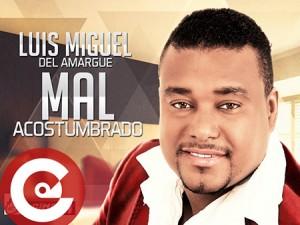 Luis-Miguel-Del-Amargue-Mal-Acostumbrado-300x225